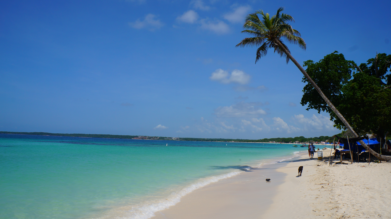 Paradise found, Playa ...